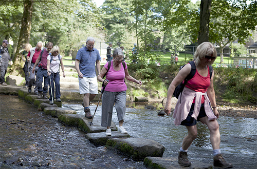 Stepping Stones, Uppermill