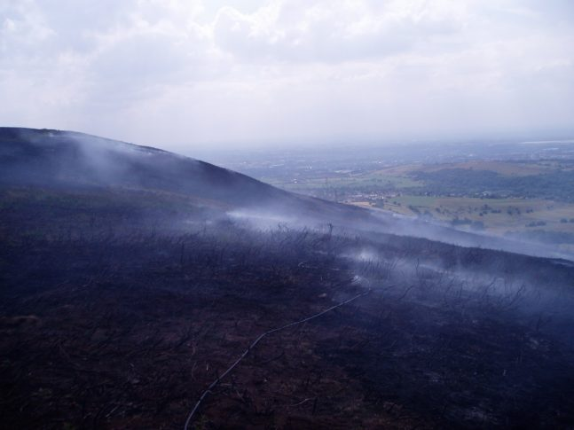 WILDFIRES highlight the vulnerability of the diverse and valuable South Pennines habitat